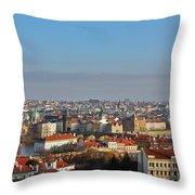 Little Mother Prague Throw Pillow by Christine Till
