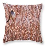 Little Sparrow Throw Pillow by Sabrina L Ryan
