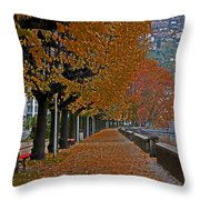 Locarno in autumn Throw Pillow by Joana Kruse