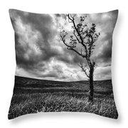 Lone Tree On The Ayrshire Moors Throw Pillow by John Farnan