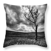 Lone Tree On The Ayrshire Moors Throw Pillow by John Farnan