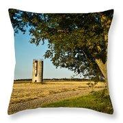 Lonely Silo 4 Throw Pillow by Douglas Barnett