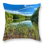 Long Branch Lake Marsh Throw Pillow by Adam Jewell