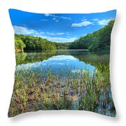 Long Branch Marsh Throw Pillow by Adam Jewell