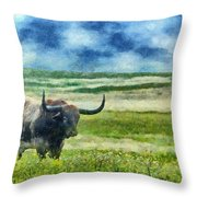 Longhorn Prarie Throw Pillow by Jeff Kolker