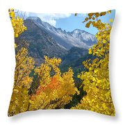 Long's Peak And The Keyboard Of The Winds Amidst Aspen Gold Throw Pillow by Margaret Bobb