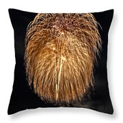 Lopez Island Fireworks 1 Throw Pillow by David Salter