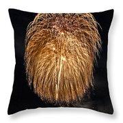Lopez Island Fireworks 1 Throw Pillow by David Salter