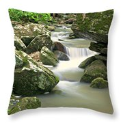 Lost Valley 1 Throw Pillow by Marty Koch