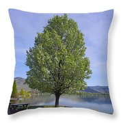 Lots Of Room To Sit Throw Pillow by John  Greaves