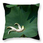 Lotus Leaf--castoff IIi Dl060 Throw Pillow by Gerry Gantt