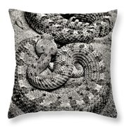 Love At First Bite Throw Pillow by Sally Bauer