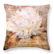Love Letter IIi Throw Pillow by Jai Johnson