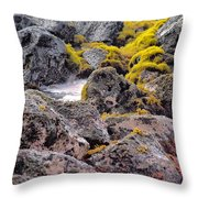 Low Tide Throw Pillow by Roger Mullenhour