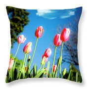 Lucy in the Sky Throw Pillow by Tamyra Ayles