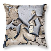 M O L T I N G Throw Pillow by Charles Dobbs