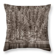 Madison River Yellowstone Bw Throw Pillow by Steve Gadomski