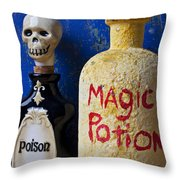 Magic Potion Throw Pillow by Garry Gay