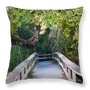 Mahogany Hammock Throw Pillow by Kenneth Albin
