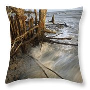 Mangrove Trees Protect The Coast Throw Pillow by Tim Laman