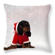 Marmaduke On Snow Background Throw Pillow by Jane Rix