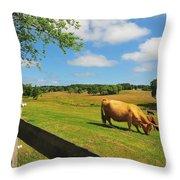 Massachusetts Farm Throw Pillow by Catherine Reusch  Daley