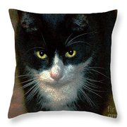 Max Throw Pillow by Dale   Ford