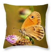 Meadow Brown Butterfly  Throw Pillow by Elena Elisseeva