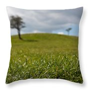 Meadow Throw Pillow by Semmick Photo