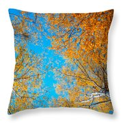 Meet In Heaven. Autumn Glory Throw Pillow by Jenny Rainbow