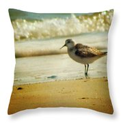 Memories Of Summer Throw Pillow by Amy Tyler