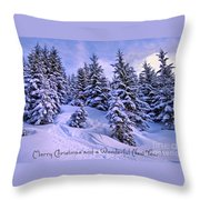 Merry Christmas And A Wonderful New Year Throw Pillow by Sabine Jacobs