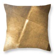 Metal Throw Pillow by Heidi Smith