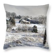 Midwestern Ice Storm - D004825 Throw Pillow by Daniel Dempster