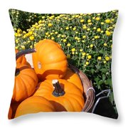 Mini Pumpkins Throw Pillow by Kimberly Perry