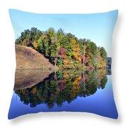 Mirror Image Throw Pillow by Susan Leggett