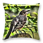 Mocking Bird Picture 2 Throw Pillow by Ester  Rogers