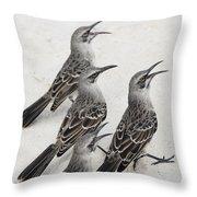 Mockingbirds Mimidae Galapagos, Equador Throw Pillow by Keith Levit