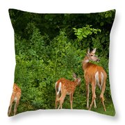 Mom And Two Throw Pillow by Karol  Livote