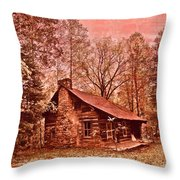 Moonshine Throw Pillow by Debra and Dave Vanderlaan