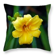Morning Beauty Throw Pillow by Mary Timman