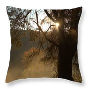 Morning Has Broken Throw Pillow by Karol Livote