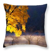 Morning Maple Ll Throw Pillow by Rob Travis