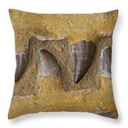 Mosasauras Teeth Throw Pillow by Garry Gay