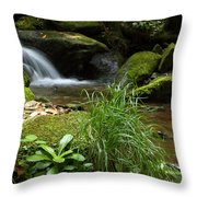 Moss And Water And Ambience Throw Pillow by Andrew McInnes