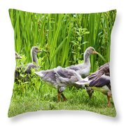 Mother Goose Leading Goslings Throw Pillow by Simon Bratt Photography LRPS