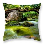 Mountain Stream Throw Pillow by Christopher Holmes