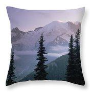 Mt Rainier As Seen At Sunrise Mt Throw Pillow by Tim Fitzharris