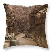Mud Filled Storm Water Scours Throw Pillow by Taylor S. Kennedy