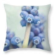 Muscari Throw Pillow by Priska Wettstein